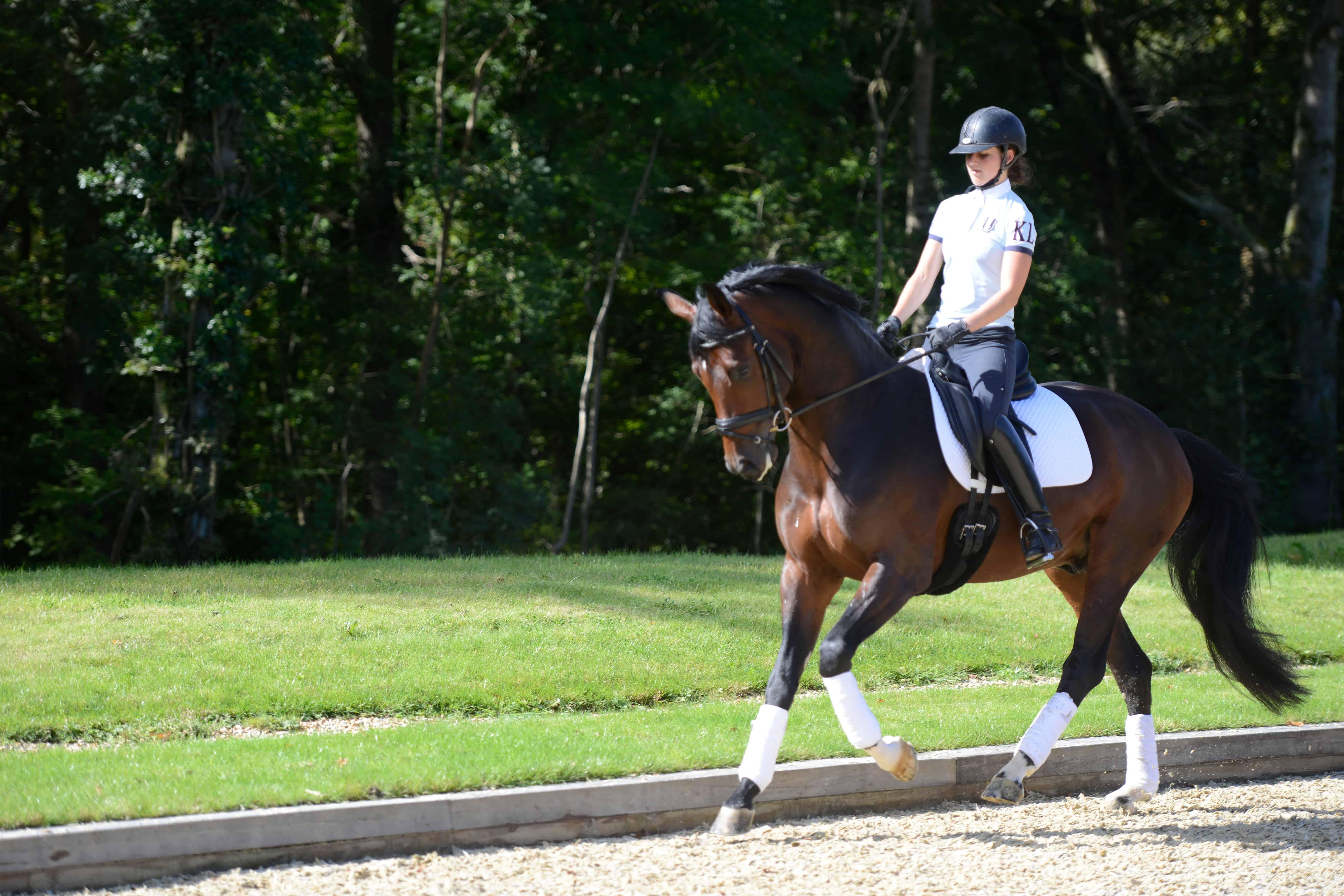 Free equestrian dating uk