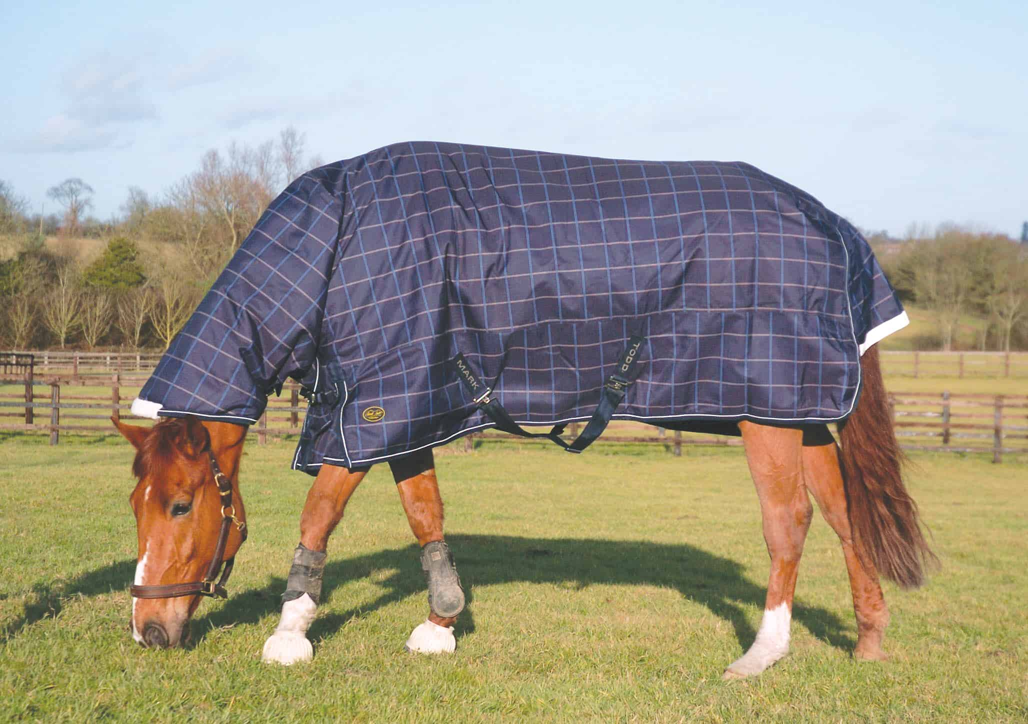 Mark Todd Heavyweight Combo Turnout Rug