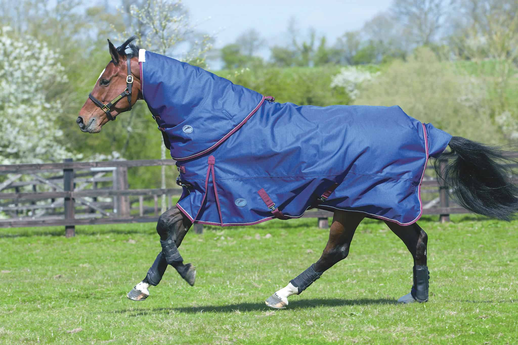 2 Jhl Heavyweight Turnout Rug With Neck