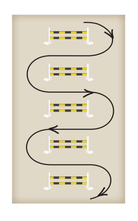 pippadiagram