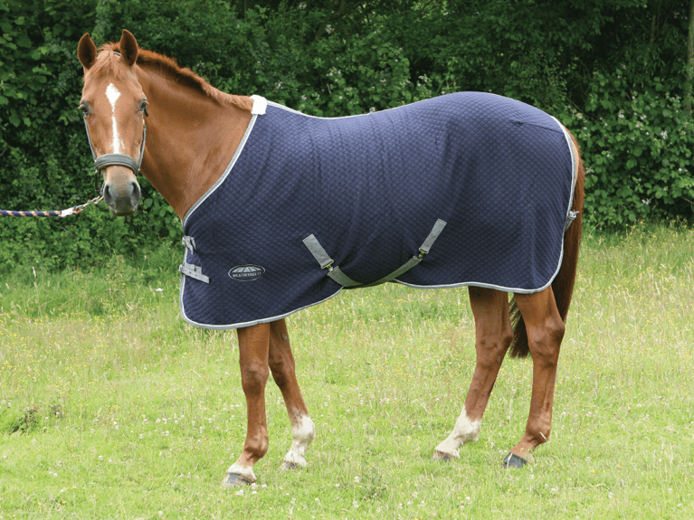 weatherbeeta-thermic-standard-neck-cooler