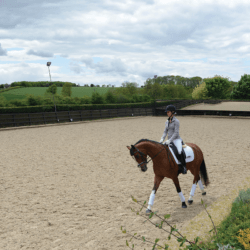 thirty-minute-flatwork
