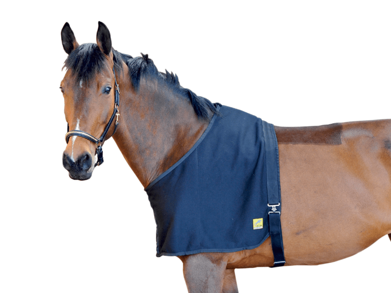Felix Bühler fleece shoulder guard