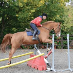 Robert Whitaker's jumping tip