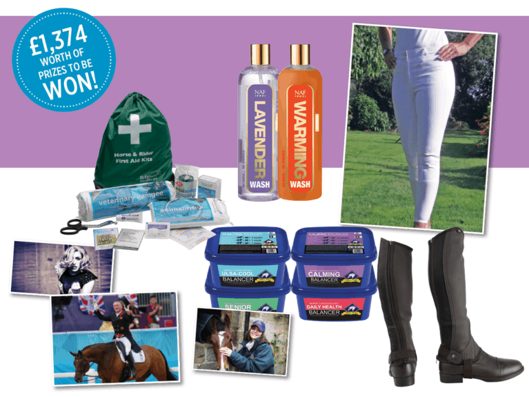 WIN with March Horse&Rider