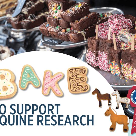 Animal Health Trust Bake