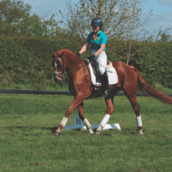 Eventing from the ground up