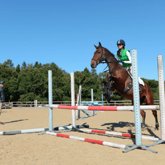 How to build your jumping canter with Jock Paget   Horse&Rider