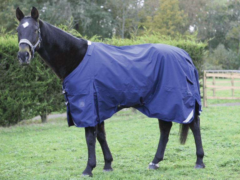 Big-Horse-Light-Weight