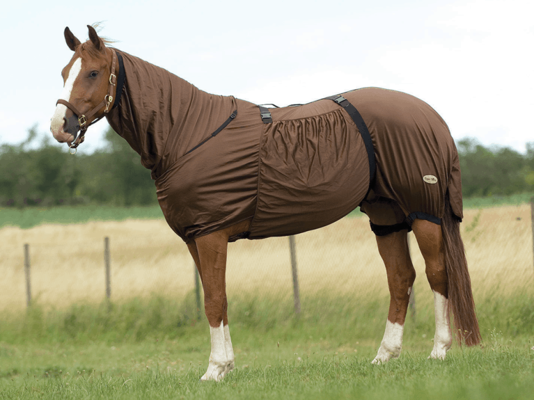 Gear Guide Equestrian Product Reviews