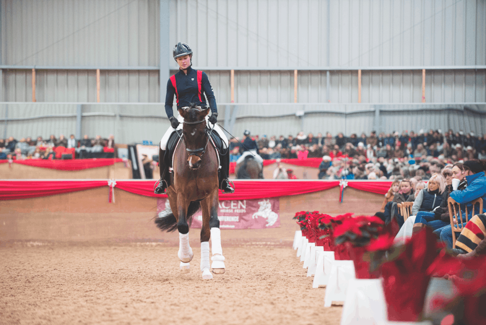 Train with Carl Hester: Dressage made simple