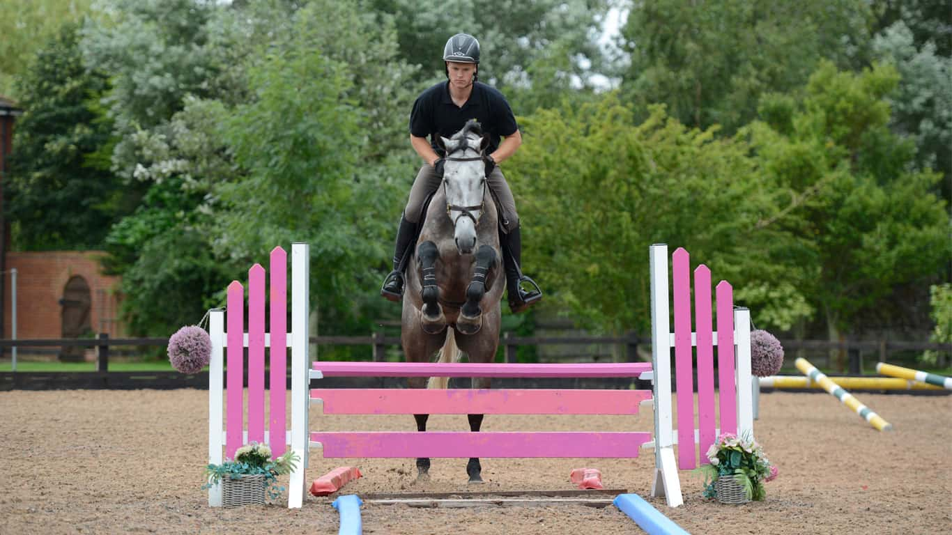 Easy Ways To Get A Clear Round Jumping Exercises Horse And Rider