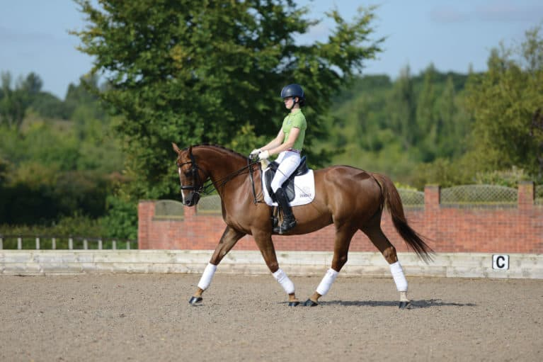 Improve your horse's suppleness