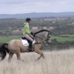 Horse&Rider July 2017