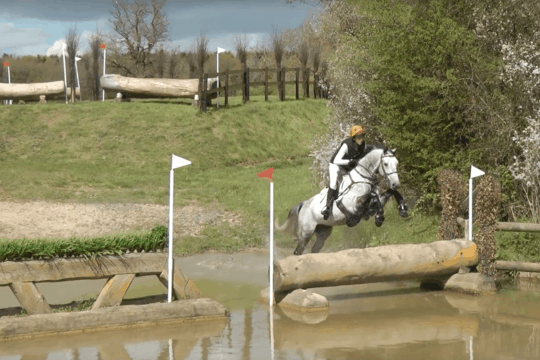 How to introduce your horse to water