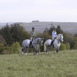 How to hack like a pro with Lucinda Fredericks   Horse&Rider