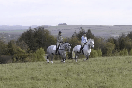 How to hack like a pro with Lucinda Fredericks | Horse&Rider