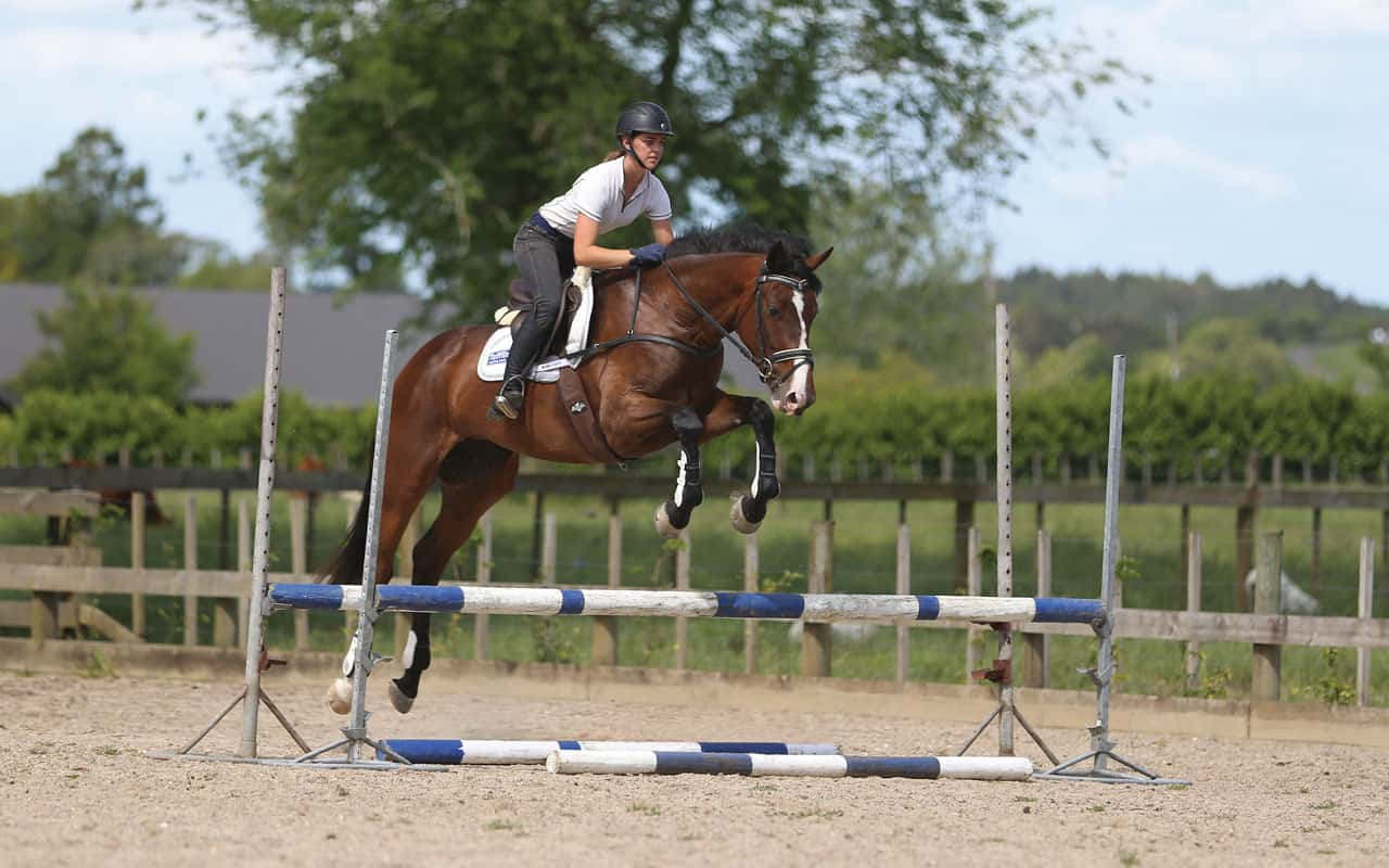 Five Simple Steps To Improve Your Horse S Jump Horse And Rider