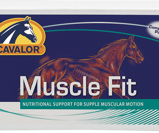 Cavalor – giving equine athletes the best chance
