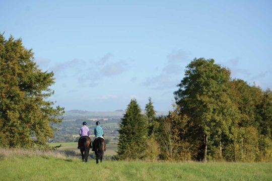 Create a confident horse with Lucinda Fredericks