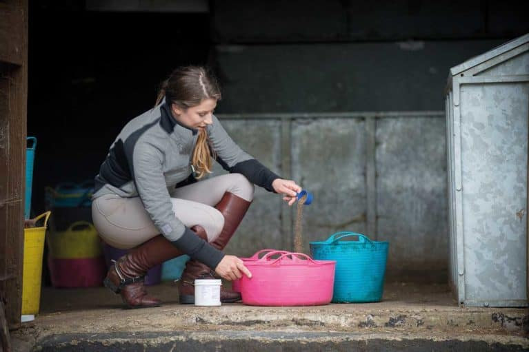 Feeding a horse supplements