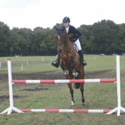 Showjumping warm-up plans
