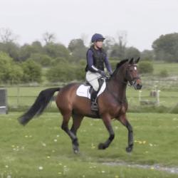 Horse&Rider Magazine – November 2017