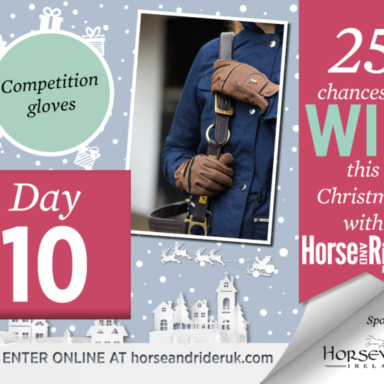 Horse&Rider Advent Calendar 2017 – Day 10
