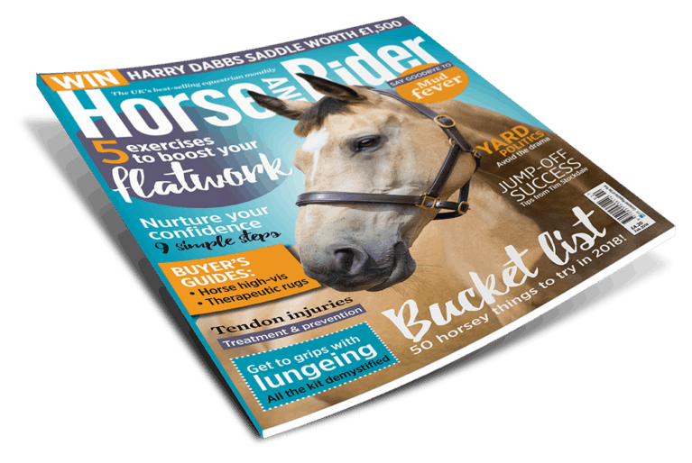 Horse deals magazine october 2018