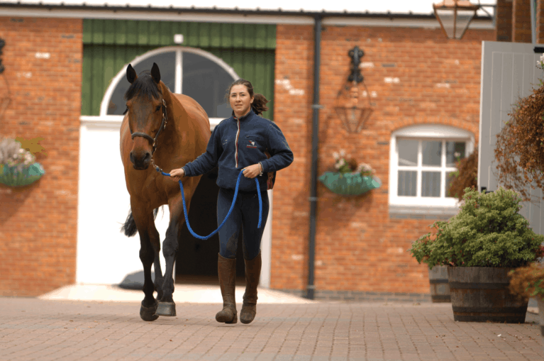 10-tips-to-live-by-when-buying-a-horse