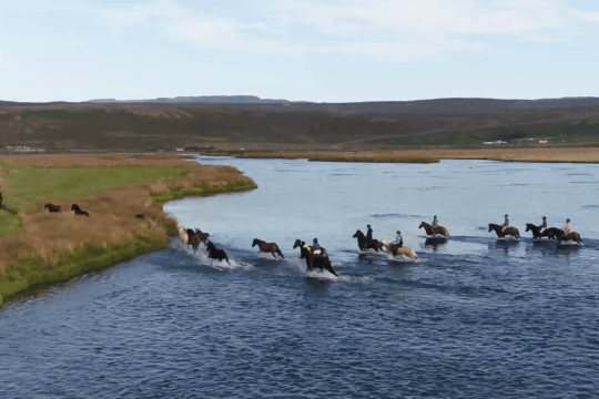 Ishestar Icelandic Riding Holidays