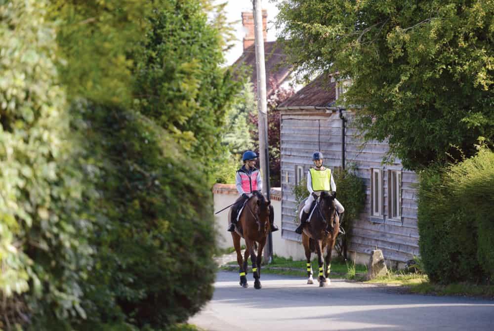 horse fitness plan