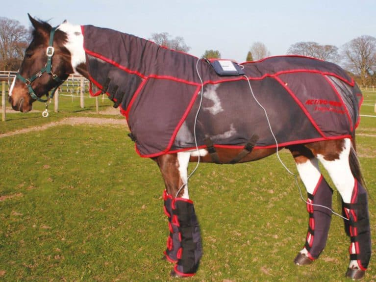 Gear Guide | Equestrian product reviews