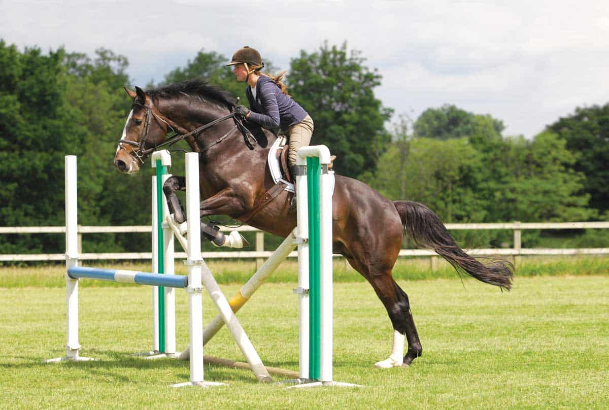 Three Gridwork Exercises You Can Do At Home Horse And Rider