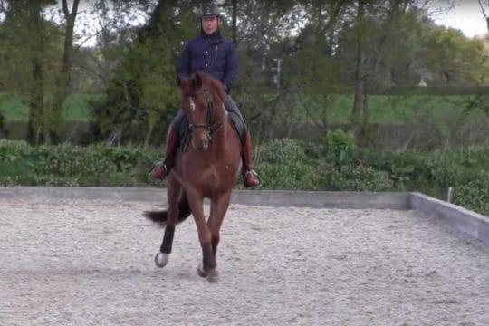 Horse&Rider July 2018