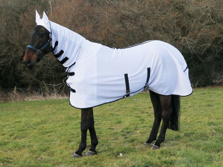 HKM Anti-fly rug tried and tested by Horse&Rider