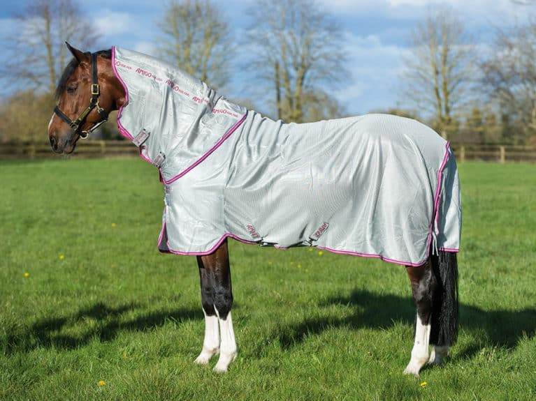 Horneare Amigo Bug Rug tried and tested by Horse&Rider