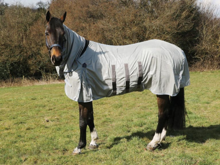 Mark Todd Ultra Combo fly rug tried and tested by Horse&Rider