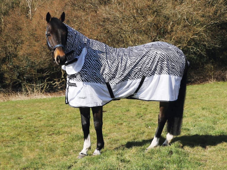 Shires Tempest Zebra Fly Combo tried and tested by Horse&Rider