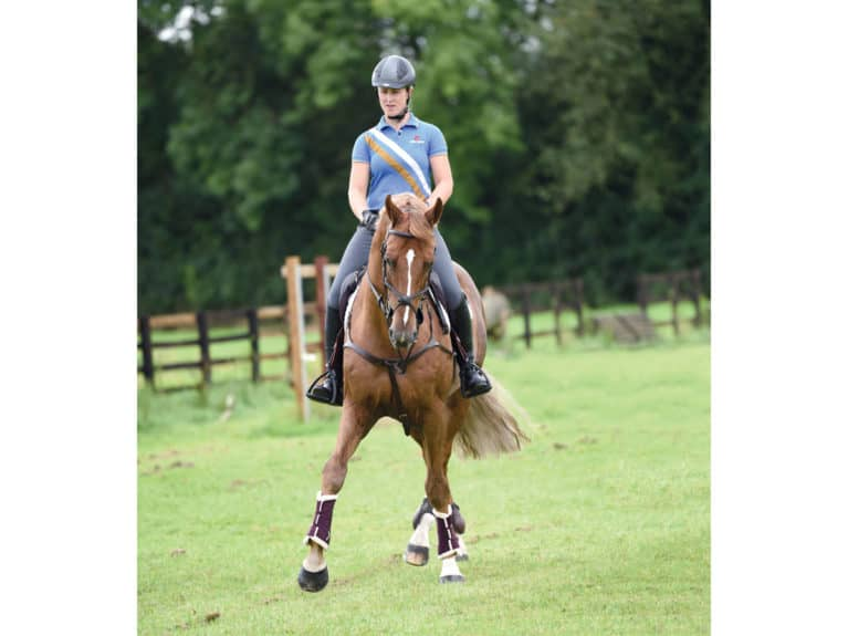 Hollie Smith, horse leg yielding