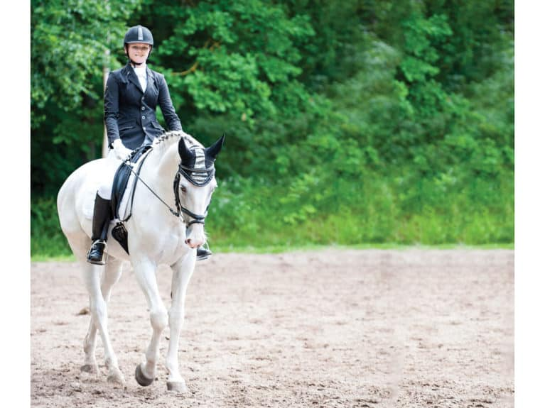 Dressage comments riders receive from judges