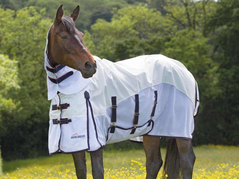 Shires Highlander Fly Rug tried and tested by Horse&Rider