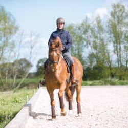 Engage your horse's quarters, rider performing travers movement