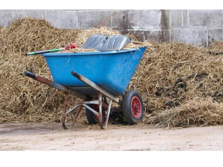Wheelbarrow at muck heap