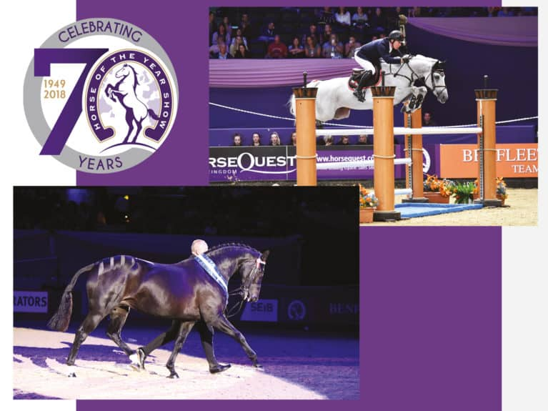 Horse of the Year Show competition