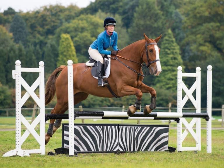 Horse Jumping a filler