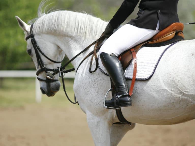 Horse rider using a half pad