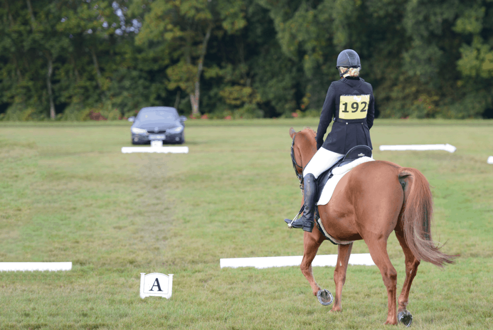 horse and rider at a competition, how visualisation can boost performance