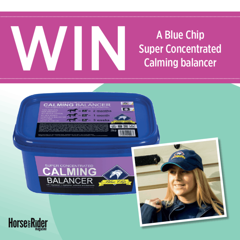 Blue Chip Super Concentrated Calming balancer and a Blue Chip Feed cap