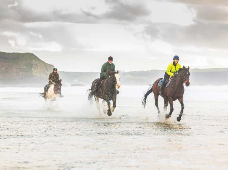 Horse riding on the beach in winter